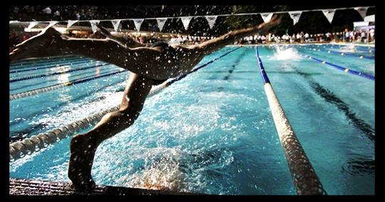 Gala Supplies Swimming Pool Sports Equipment Supplier